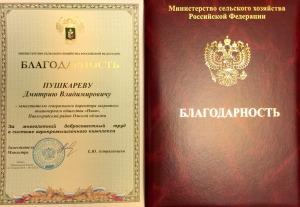 пушкарев2015