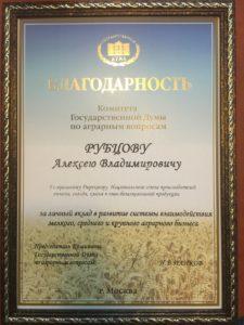 Благодарность ГД Рубцов 2012