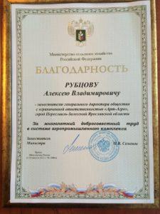 благодарность Рубцов 2013